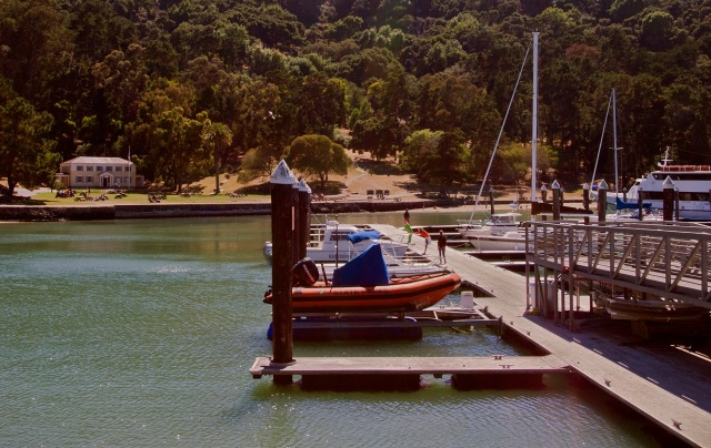 Ayala Cove Angel Island Boat Docks
